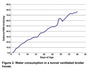 Water consumption in a tunnel ventilated broiler house
