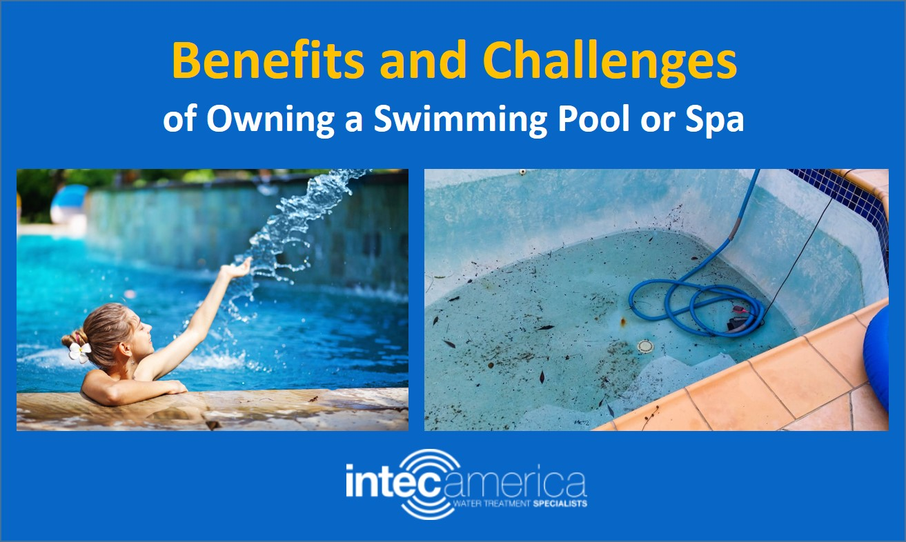 Benefits and Challenges of Owning a Swimming Pool or Spa
