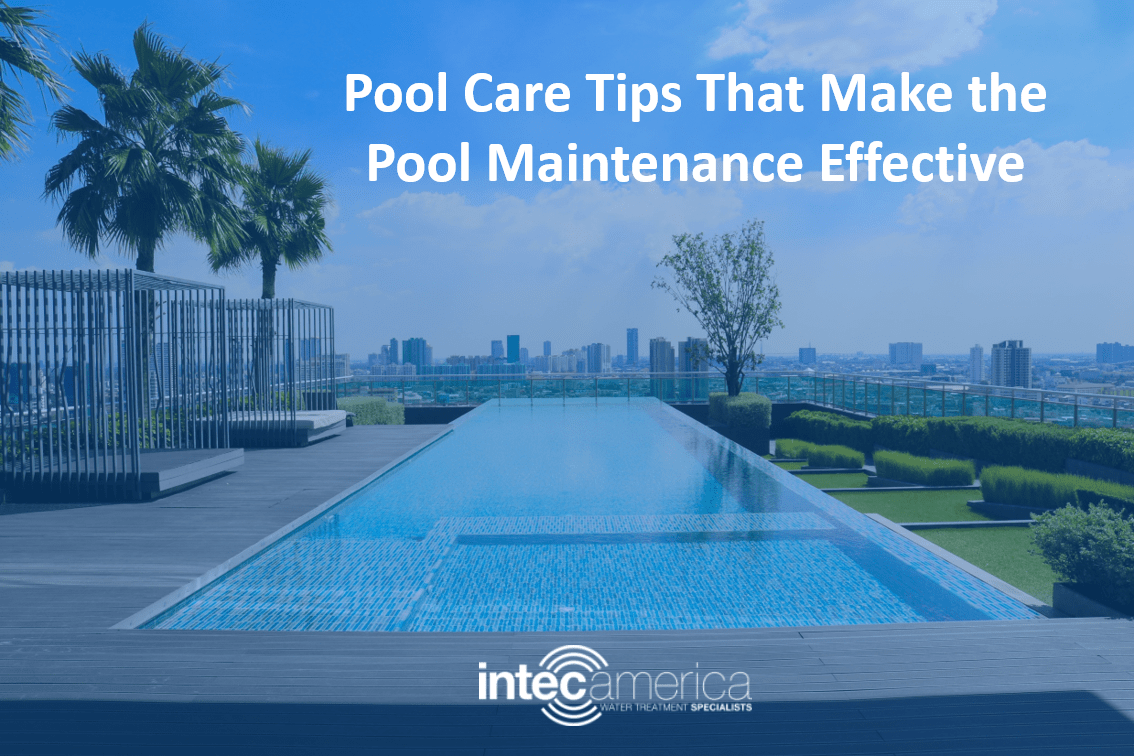 Pool Care Tips That Make the Pool Maintenance Effective